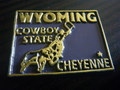 U.S.A.STATE MAGNET~WYOMING~