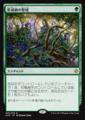形成師の聖域/Shapers Sanctuary/XLN-206/R/緑
