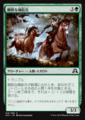 剛胆な補給兵/Intrepid Provisioner/SOI-213/C/緑
