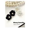 Glossy Camellia