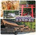 満席御礼![11/5~7]奈良熊野遠征セッション