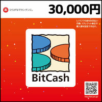 BitCashコード(30,000円)