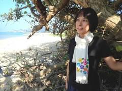 【ネット販売限定】紅型染めストール(ユウナの花)