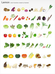 No.620 野菜のイラスト