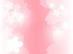 No1100 お洒落な桜のイラスト ピンク