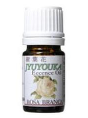 樹花花エッセンスオイル ローザブランカ(白バラ)