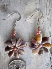 Tiny Cowry Flower Kahelelani Pierce  No,1