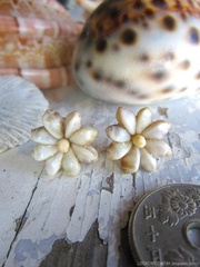 Zakuro Shell Flower pin pierce No,13