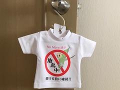放鳥中サインミニTシャツ ※受注製作(固定カラー商品)