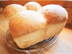 食パン*木~日出荷