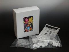 ぷにカラー23「ミィナ」ホワイトレジン組立キット