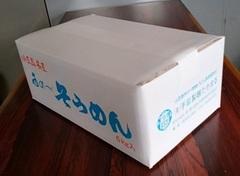 手延素麺    SD-60