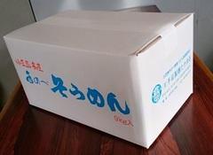 手延素麺     SD-90