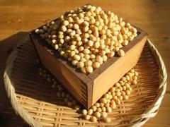 自然栽培(無肥料無農薬) 大豆 1㎏