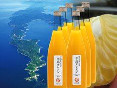 追熟清見タンゴールジュース