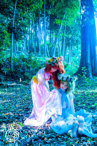 "Enter serial number Photograph on canvas. ""Winter Fairy and Spring Fairy"""