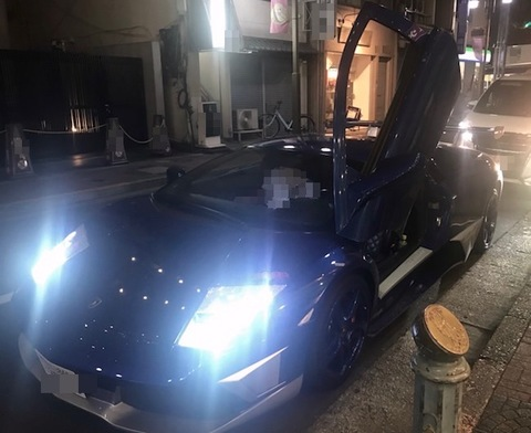 Lamborghini Murcielag ★120%日本製★プラズマハイパー2 純正交換HIDバルブ D2C・8000K [SOLAM(ソーラム)社製]ランボルギーニ ムルシエラゴ・ABA-BE537