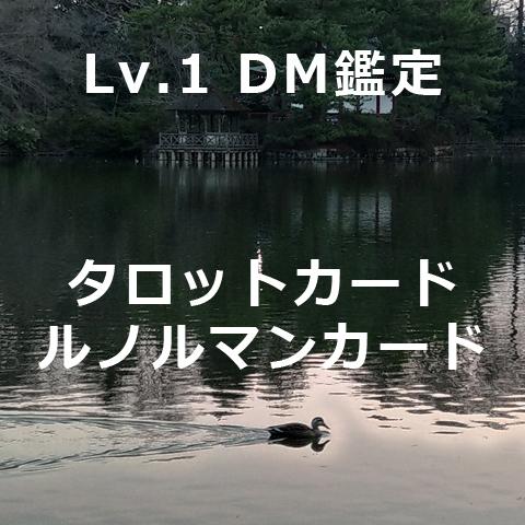 Lv.1 DM鑑定(タロット、ルノルマン)