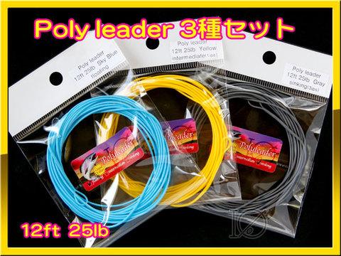 【イオ】ポリリーダー 12ft 25lb 3種セット Poly leader