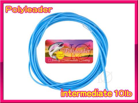 【イオ】 ポリリーダー 9ft Blue intermediate インターミディエイト