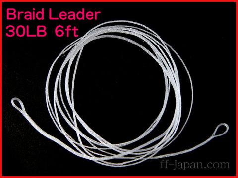 ブレイデッドリーダー 6ft フローティング 30LB