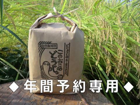 ◆年間予約のお客様専用◆ 自然栽培米このおこめどうじょ 白米10キロ