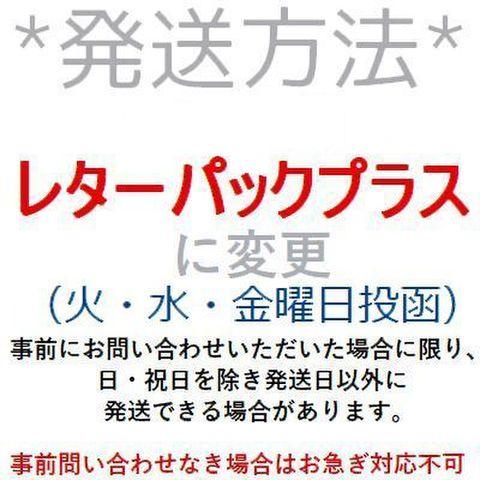 レターパックプラス発送(送料差額)