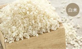 コシヒカリ 5kg 白米