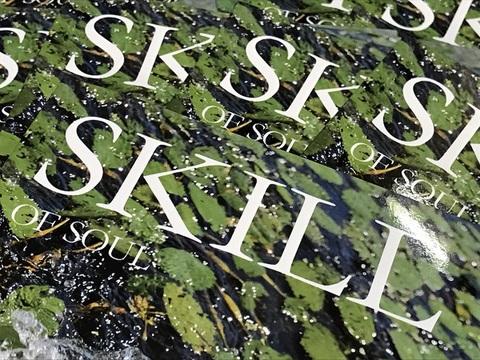 SKILL OF SOUL No.3