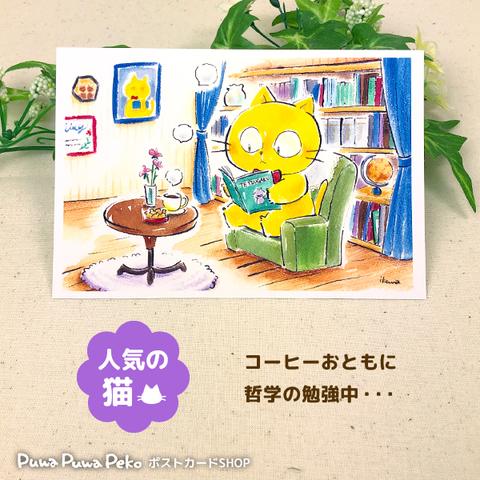 ポストカード【哲学ネコ】
