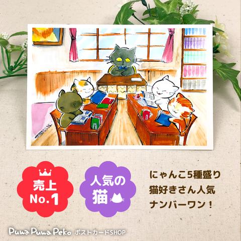 ポストカード【猫の事務所】