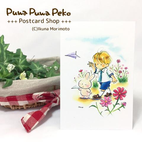 ポストカード【コスモスと紙飛行機】