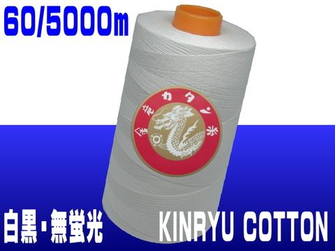 60/5000m金竜カタン(白黒/無蛍光)