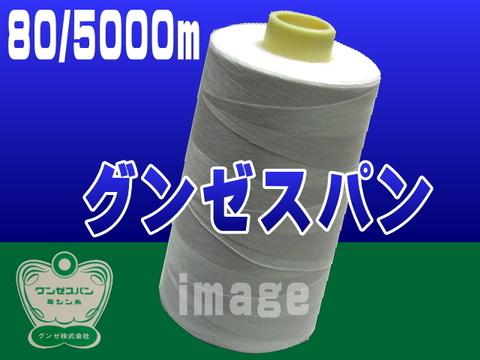 80/5000mグンゼスパン