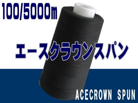 100/5000mエースクラウンスパン