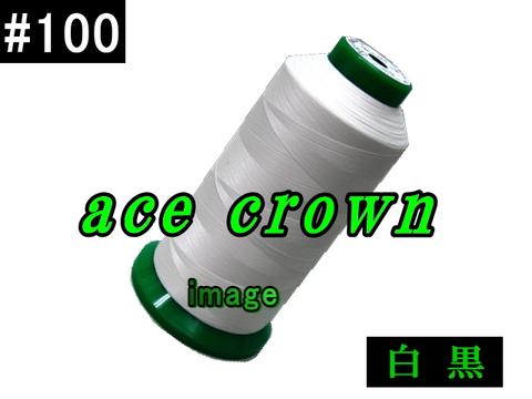100/5000mエースクラウン
