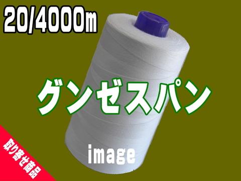 20/4000mグンゼスパン