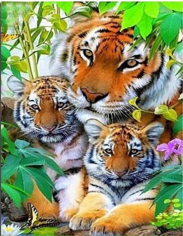 A3サイズ【d1082】茂みに潜む虎の親子