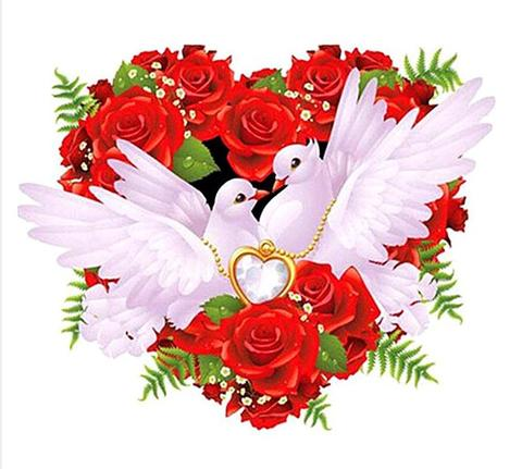 【1-34-2】A3 白鳩love赤い薔薇