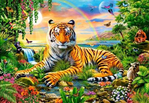 【3-11】A2虎と虹 動物の楽園