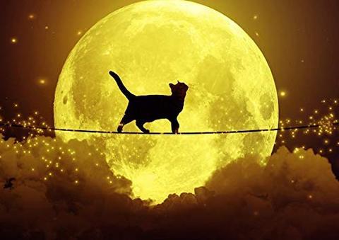 B4 月夜の綱わたり(猫)ダイヤモンドアート(KIC-T1-236)