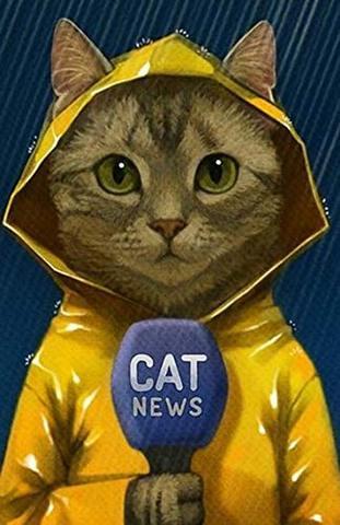 A4額付き!News CAT ダイヤモンドアート(KIC-1-200)