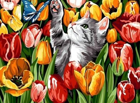【1-95】A3 チューリップ畑の蝶と遊ぶ猫