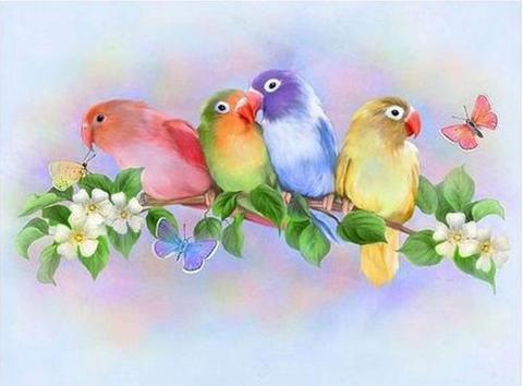 【1-5】A3 カラフルで愛らしい小鳥