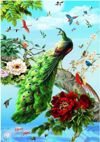 【d1052】孔雀牡丹鳥