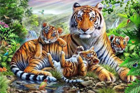【d1084】A2勇敢な虎の子供たち