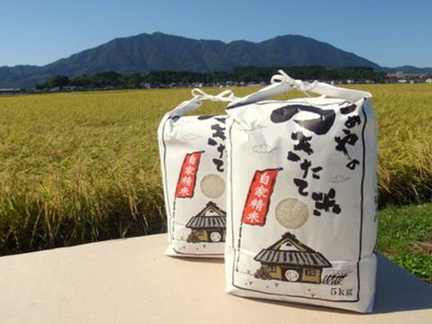 【2020年産 新米】石井農園コシヒカリ 白米10kg
