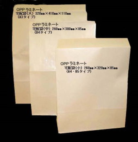 OPP宅配袋(大) A3用 250枚パック【送料無料】