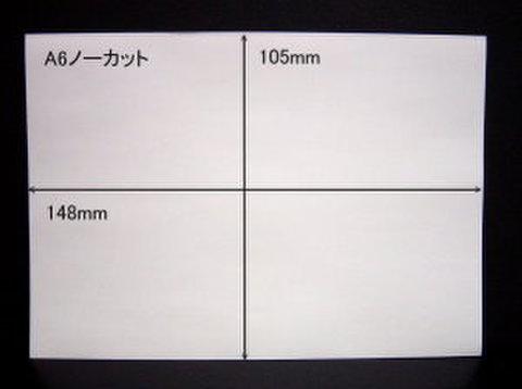 ノーカットタックシールA6サイズ 100枚パック【送料無料】