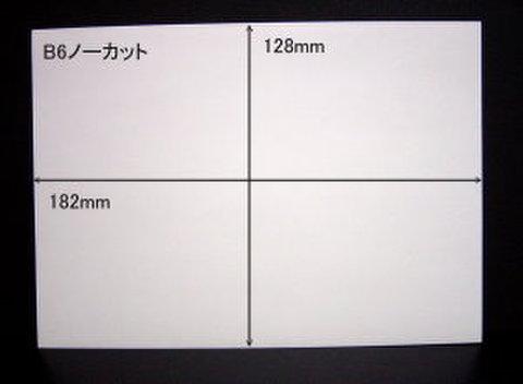 ノーカットタックシールB6サイズ 20枚パック【送料無料】